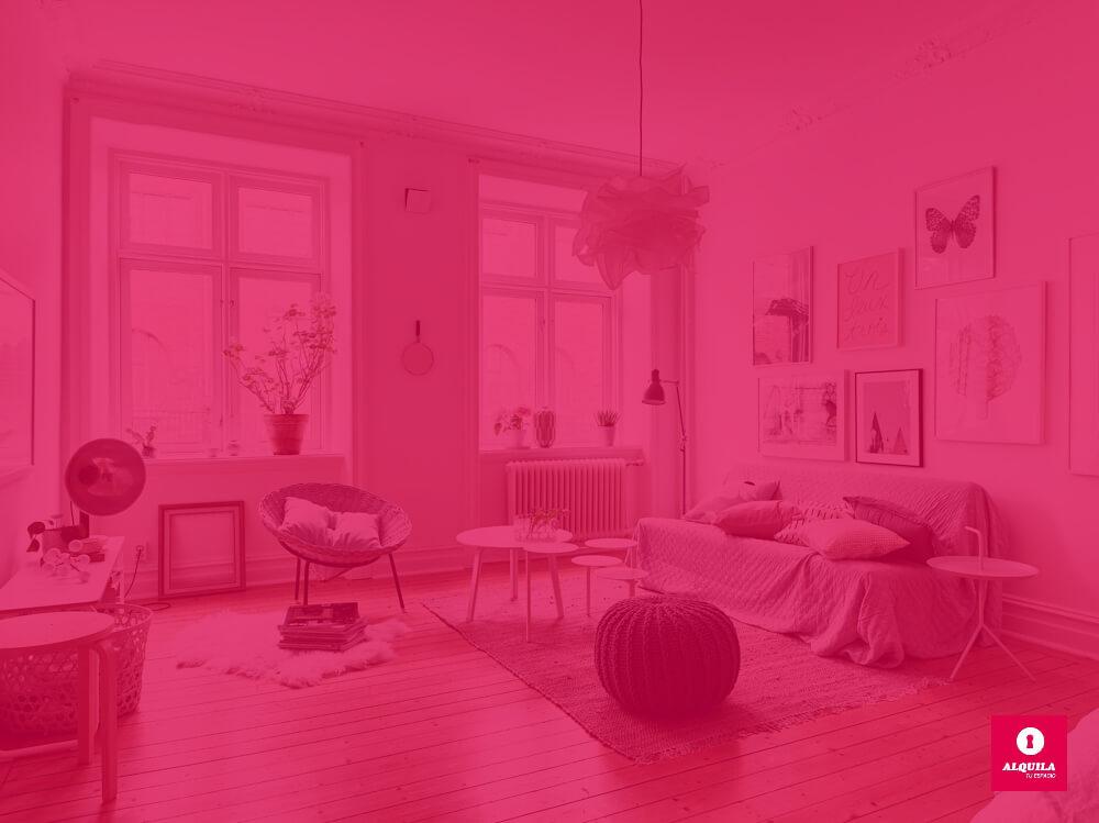 Ideas útiles para renovar tu casa en primavera