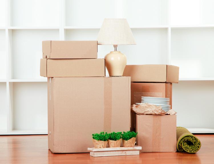 como hacer una mudanza éxito zaragoza cajas embalaje